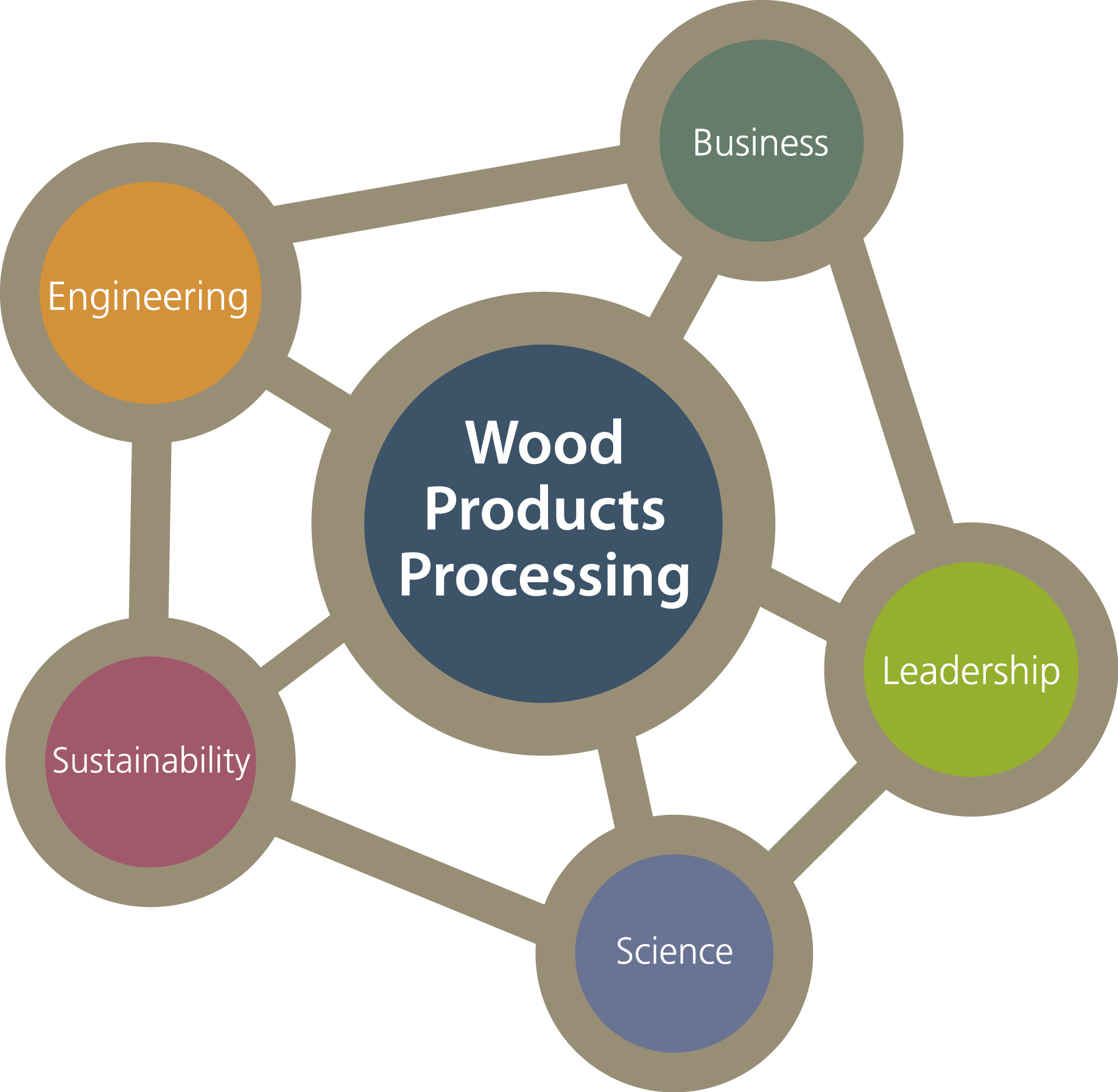 BSc Wood Products Processing